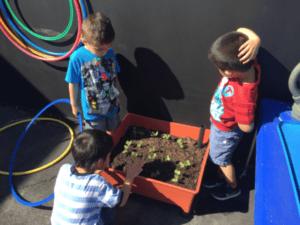 Three children doing a gardening activity.